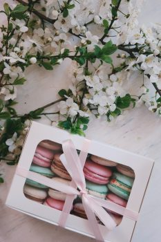 Macaron, cakes, cherry blossom tree free stock photo
