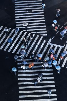 Сrosswalk and people with umbrellas, top view