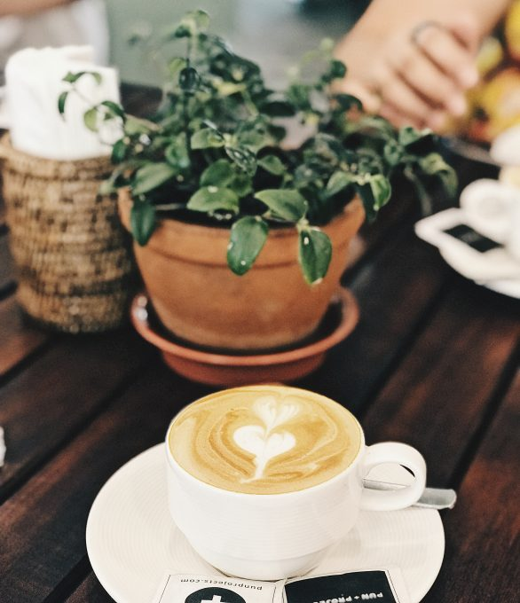 A green leafed plant near a cup of coffee