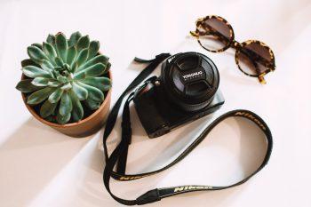 Black Nikon DSLR camera beside a green succulent plant