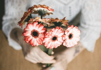 Selective focus photography of a person holding red-petaled flowers