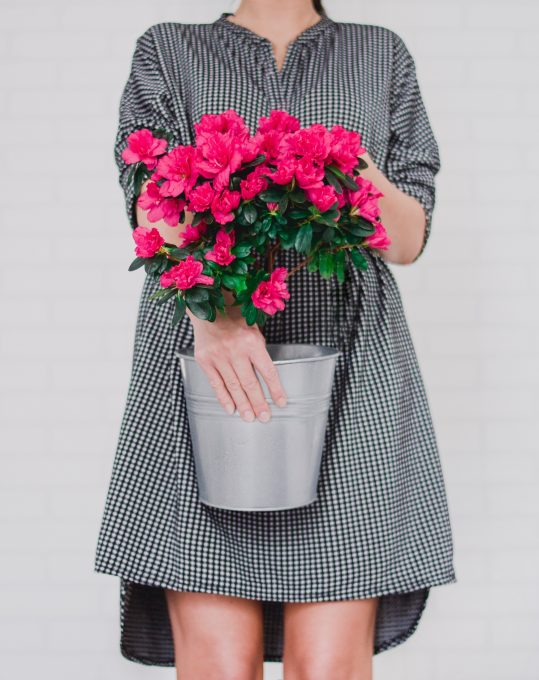Women wearing black and white midi dress holding a bucket with flower