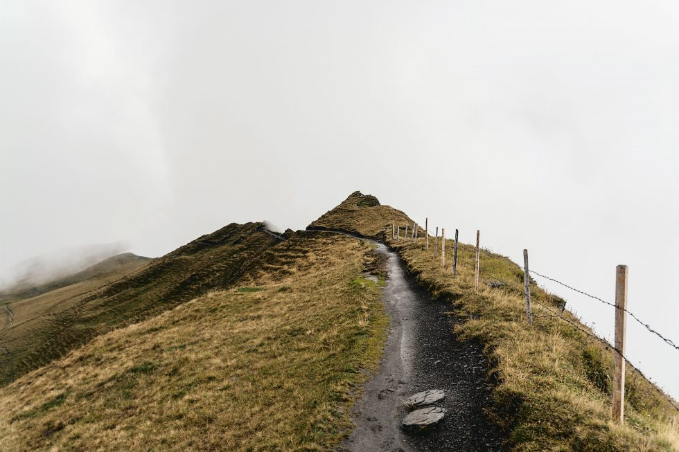 A pathway on top of a foggy green mountain