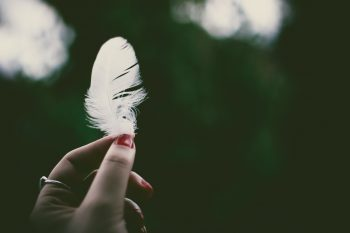 A person holding a white feather in a selective focus photography