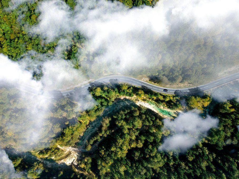 Bird's eye view of a winding road between woods