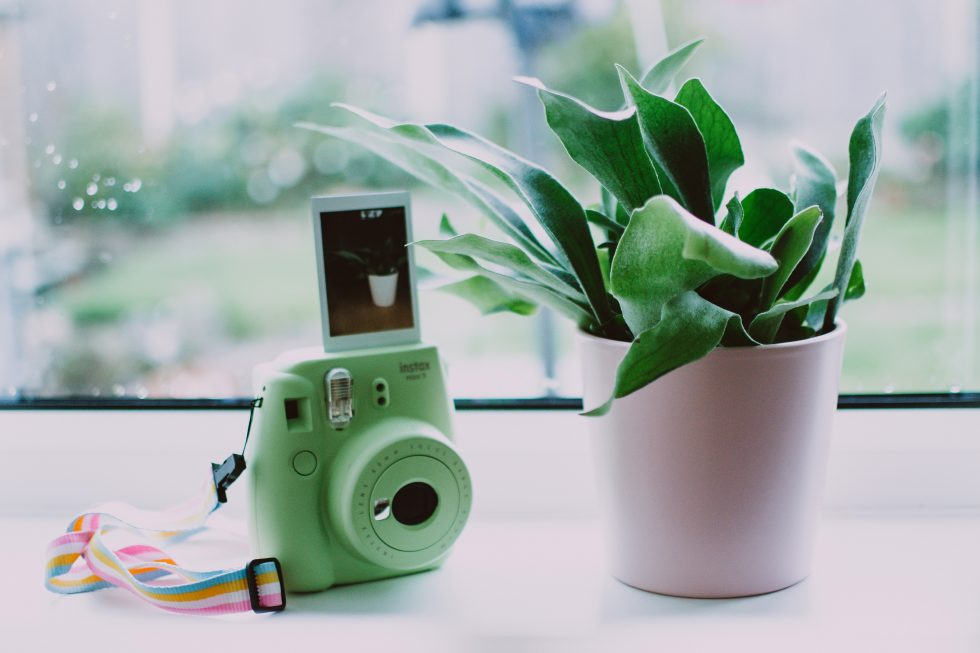 Green instant camera standing on a windowsill next to a pot plant