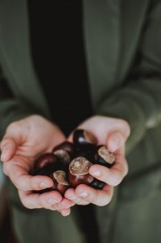 Photo of a person holding chestnuts