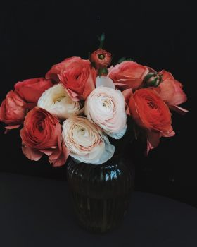Photo of flowers in a vase on a dark background