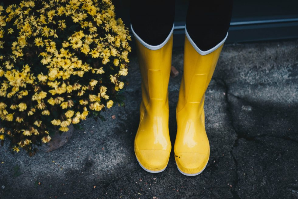 Top view of yellow boots near flowers