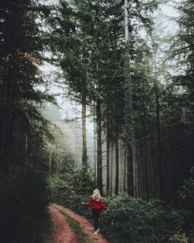 A woman in a red sweater walking along a pathway in a foggy forest