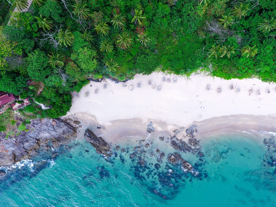 Aerial view of water hitting rocks on a seashore near trees