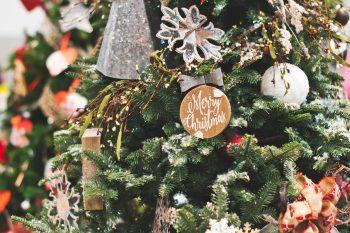 Close-up photo of Christmas tree
