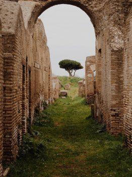 Ruins near a tree on a hill