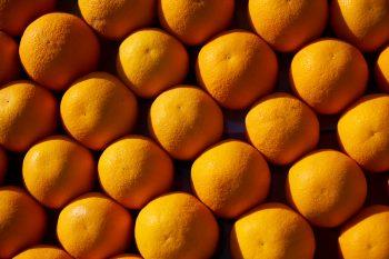 A lot of orange fruit