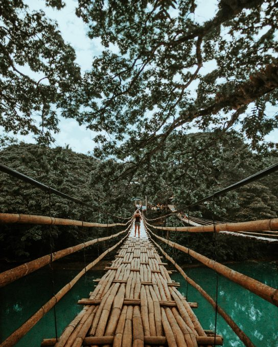 Back view photo of a woman standing on a wooden bridge