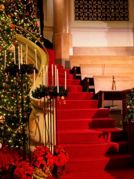 Benches beside stairs in a room decorated for Christmas