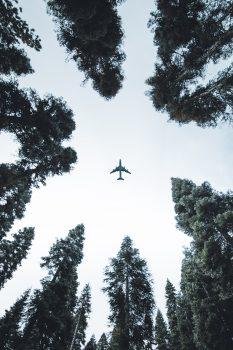 Low-angle photo of an airplane