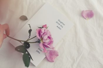 A person holding a pink flower over a book lying on a white sheet